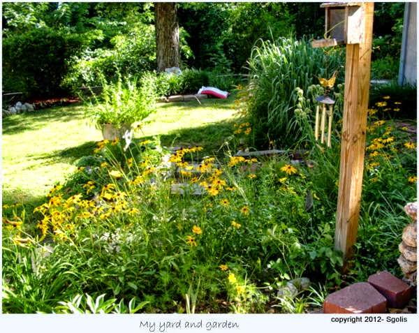 yard and garden secrets maintaining backyard wildlife habitat