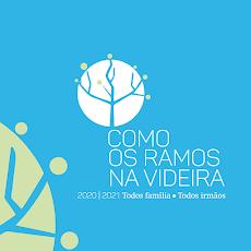 PLANO PASTORAL DIOCESANO 2020/2021-COMO OS RAMOS NA VIDEIRA Todos Família.Todos Irmãos