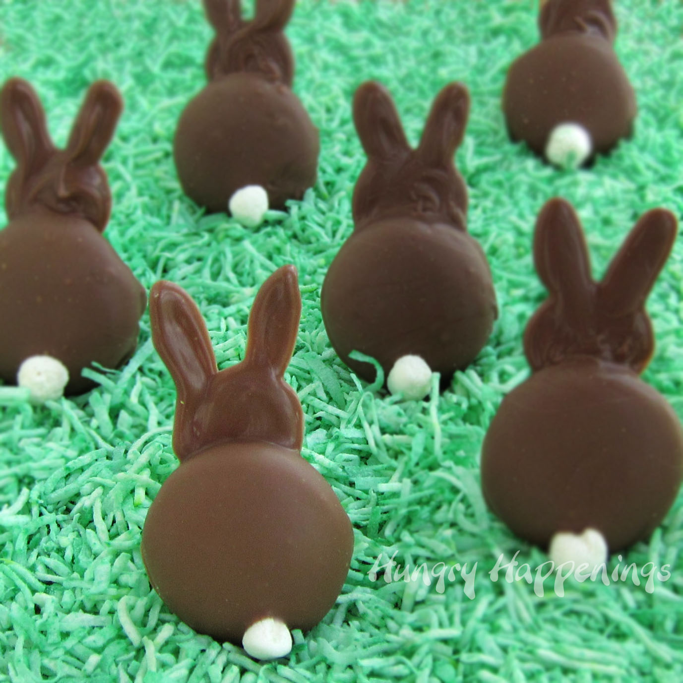 Cute Easter Bunny Chocolate