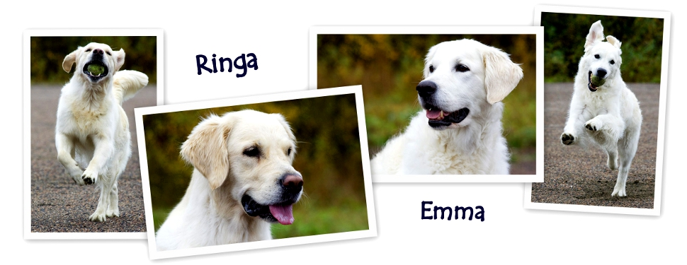 Emma & Ringa