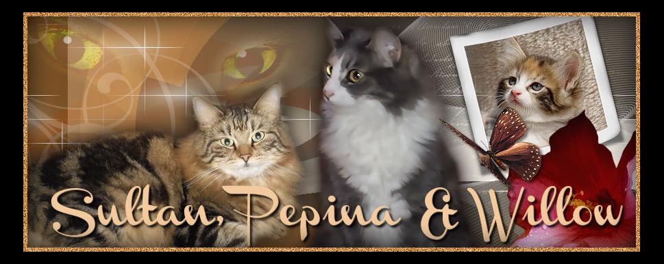 Pepina und Sultan von Asyriss