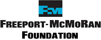 Freeport-McMoRan Foundation Scholarship