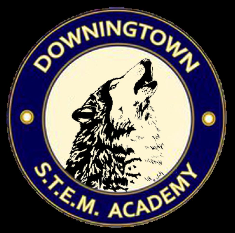 STEM Academy NHS
