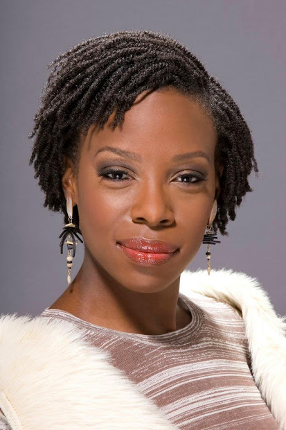 afro twists hairstyles - fashion