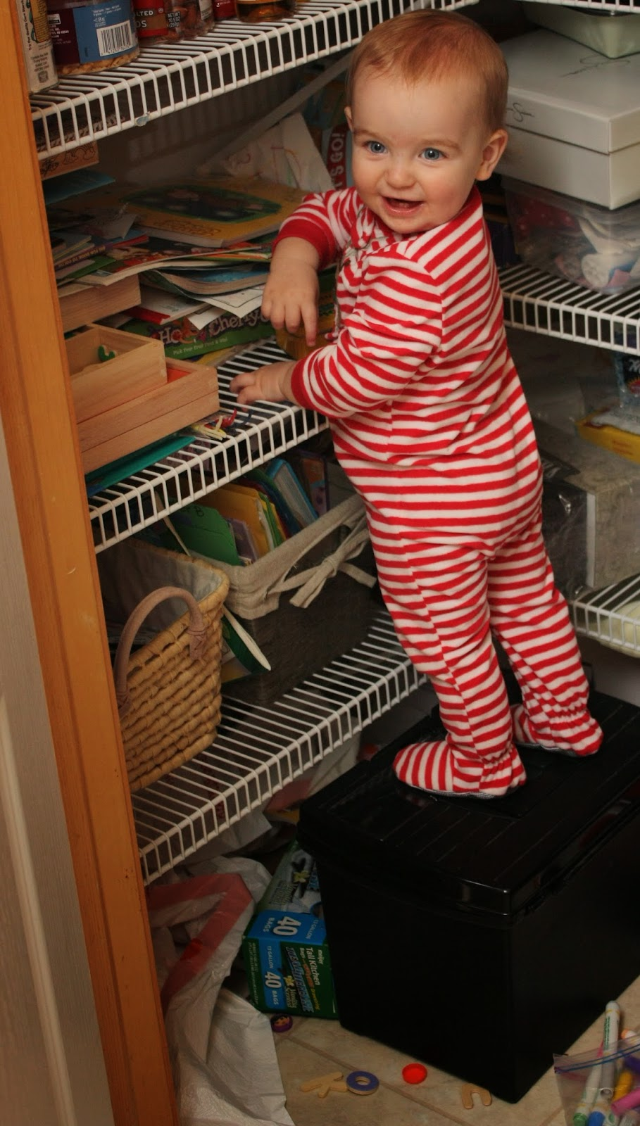 He can scale shelves and destroy my pantry, but he can't walk?!?