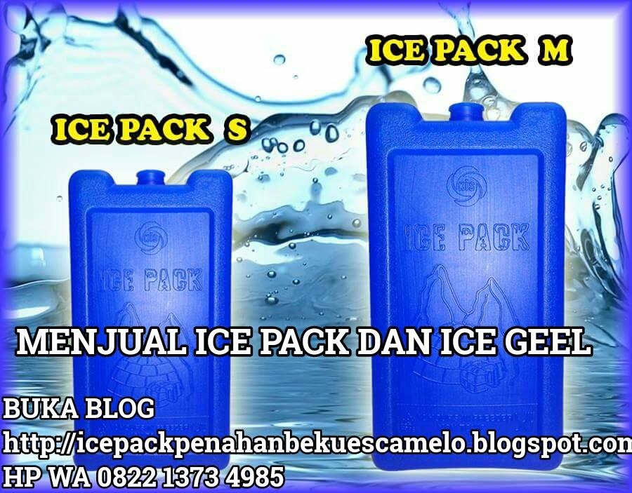 ICE PACK MENAHAN BEKU ES CAMELO DALAM BOK TERMOS  BEKU 10 JAM