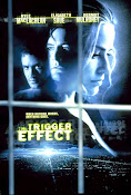 El Efecto Dominó (The Trigger Effect) (1996)