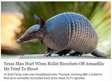 armadillo bulletproof