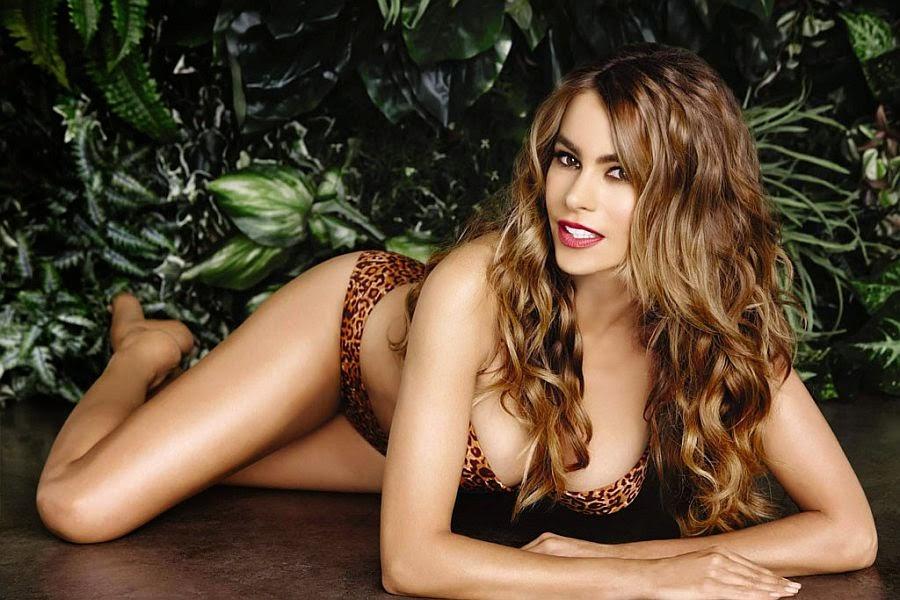 The buxom, Sofia Vergara was perfectly happy to show off her perfect figure - going from innocent blonde to seductive brunette in a dazzling new advert for Kmart of company who have headquartered in Illinois, USA.
