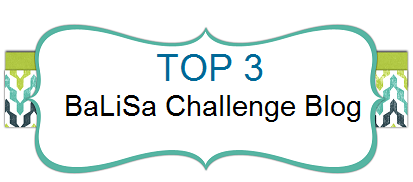 01/2016 Gewinner bei BaLiSa Challenge Blog