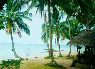 Beach bungalows on Full Moon party island 1993