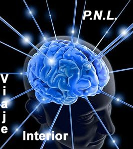 PsicoNegocios Consultores  – Programación Neuro Lingüística (PNL)