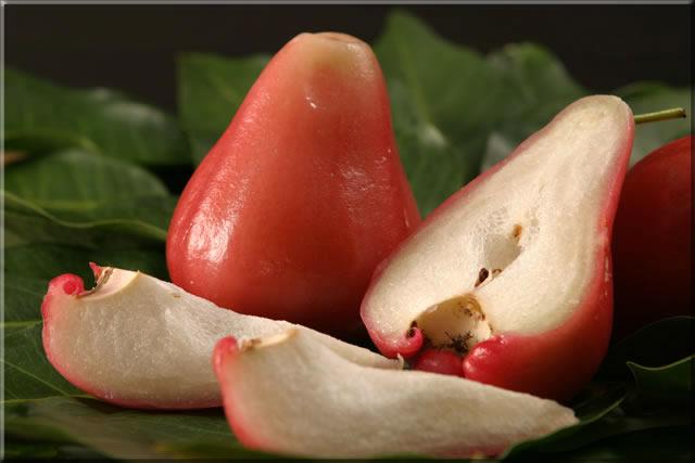 Jambu Fruit