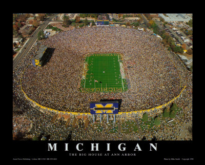 Go Blue The Big House