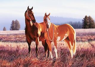 dibujos-de-caballos-hechos-a-mano-con-ole