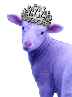 The Royal Lamb