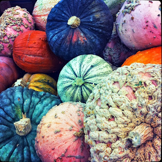 the nutritional value of pumpkins do more than decorate
