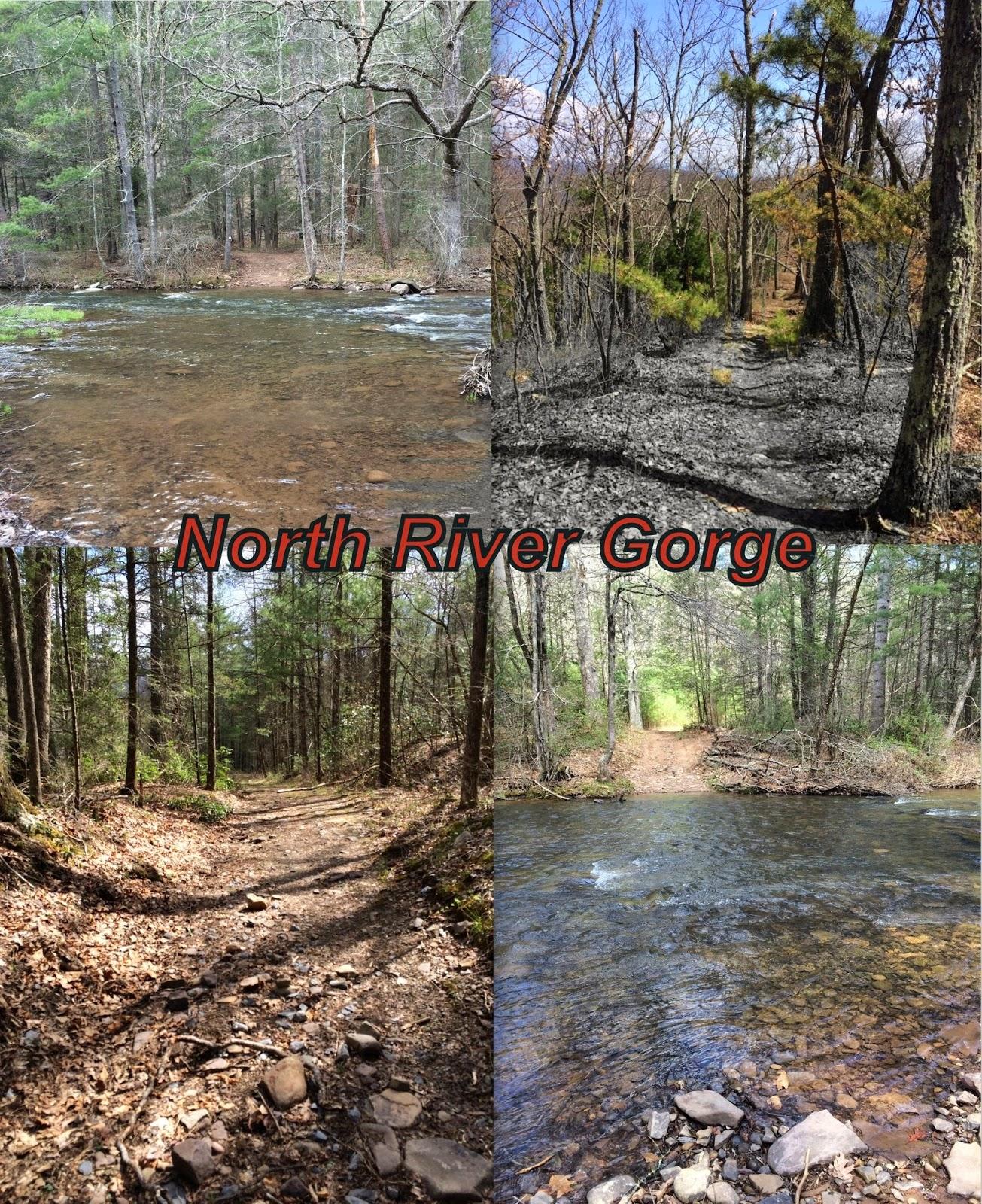 North River Gorge Hike