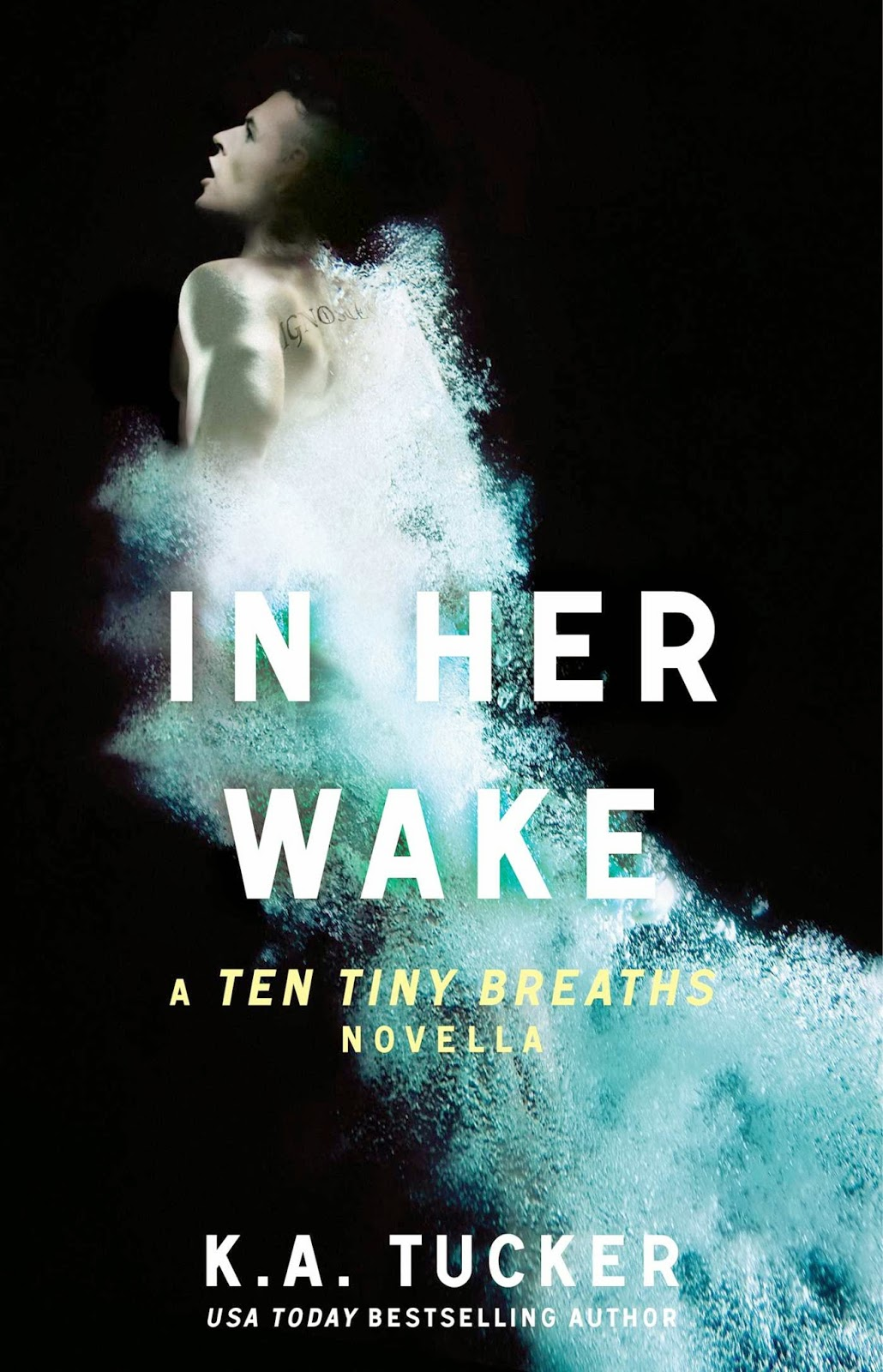 https://www.goodreads.com/book/show/21487587-in-her-wake