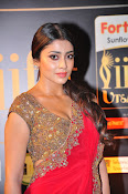 Shriya Sizzling in saree at IIFA Utsavam-thumbnail-7