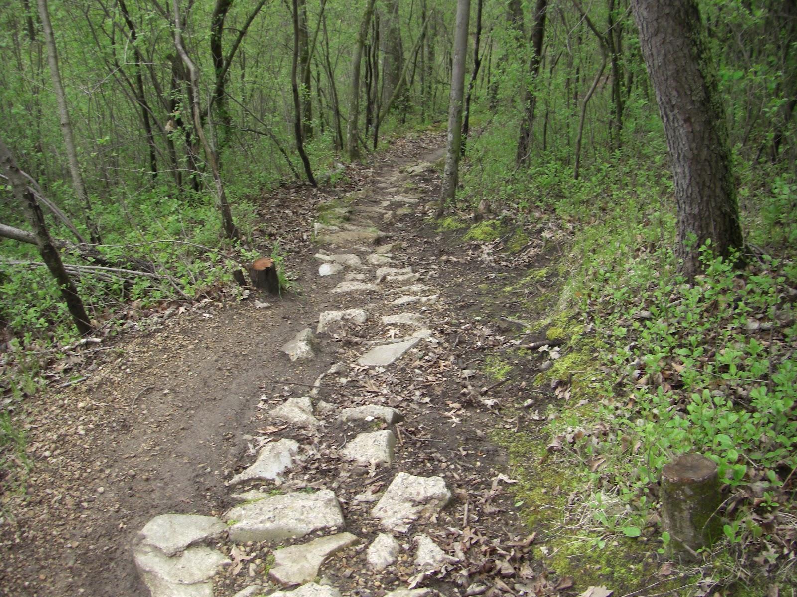 Mn Bike Trail Navigator Put Your Mountain Biking Skills And Speed
