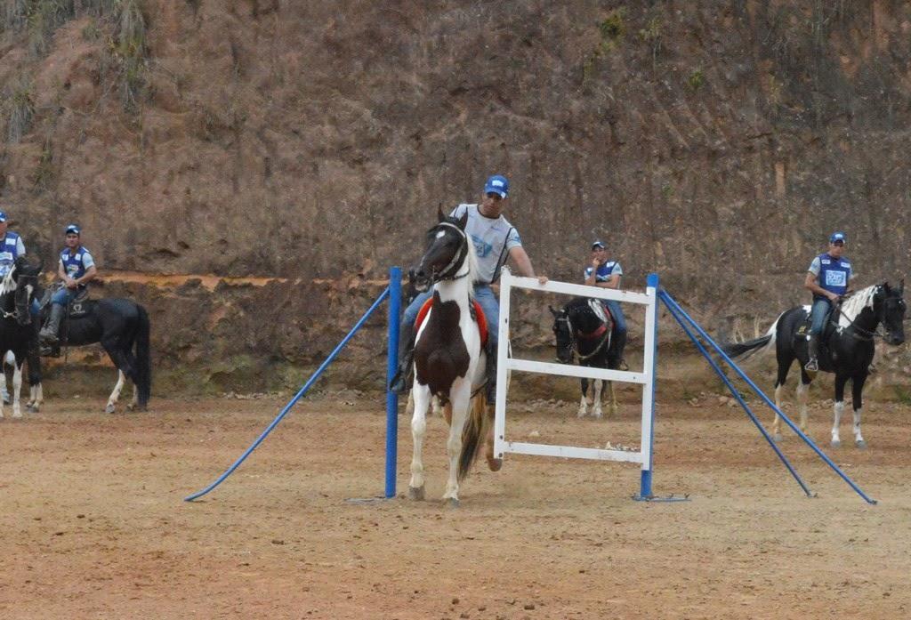 Reunindo cerca de 200 animais, , a 8ª ExpoPampa agitou a zona rural de Teresópolis no último final de semana