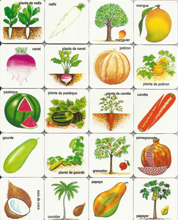 Refreshing image for printable pictures of vegetables