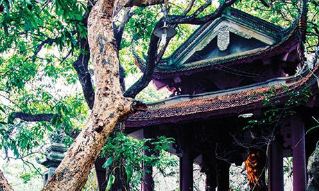 Chua Thay Pagoda