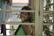 Trishala shah glamorous photos-thumbnail-7