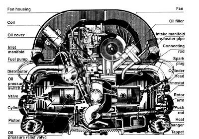 Anatomia motor boxer