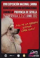 Del 1 al 3 de junio de 2012 la XVIII Exposición Nacional Canina y la XXXVI Exposición Internacional Canina