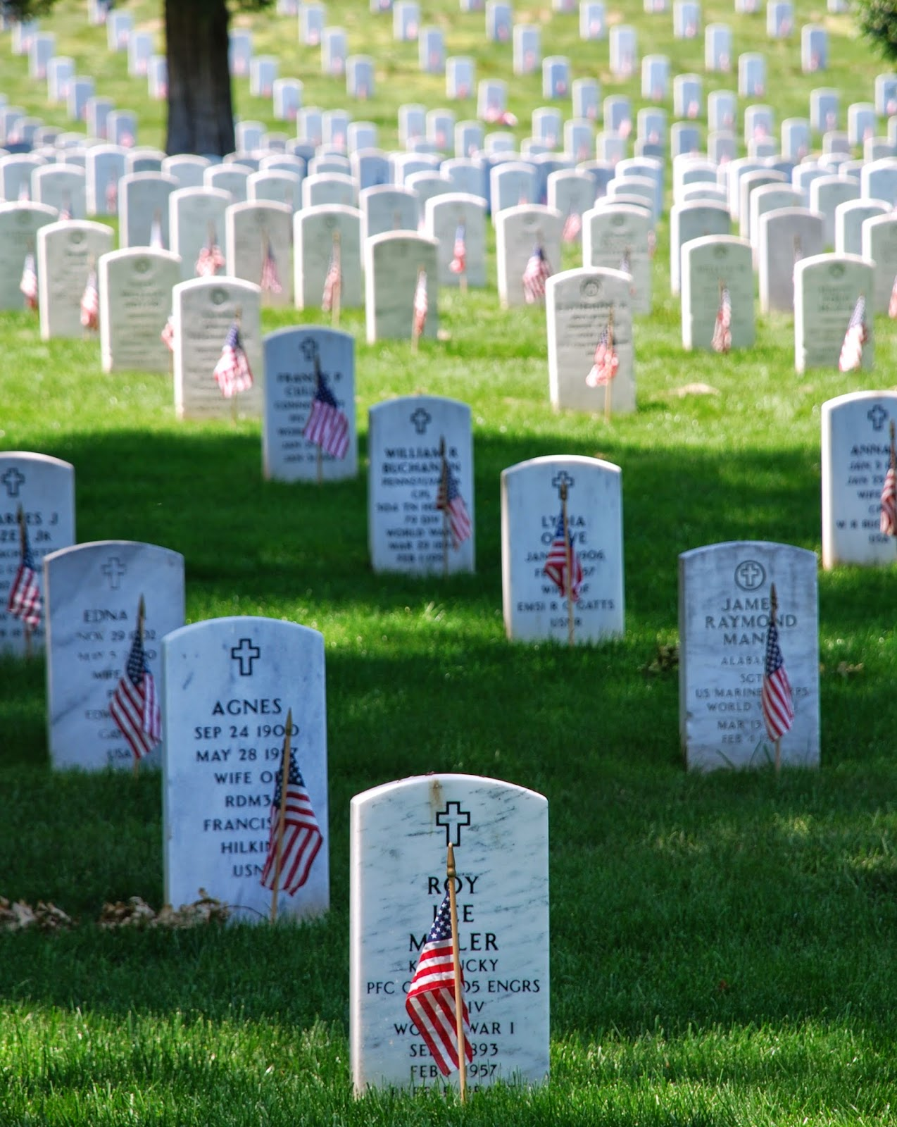 serving in the united states military essay