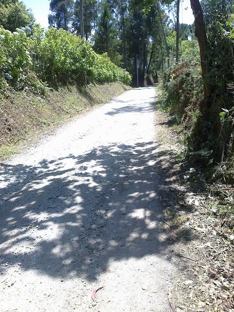 Camino hacia Maianca Oleiros