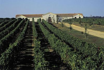 Organisation séminaire autour du vin