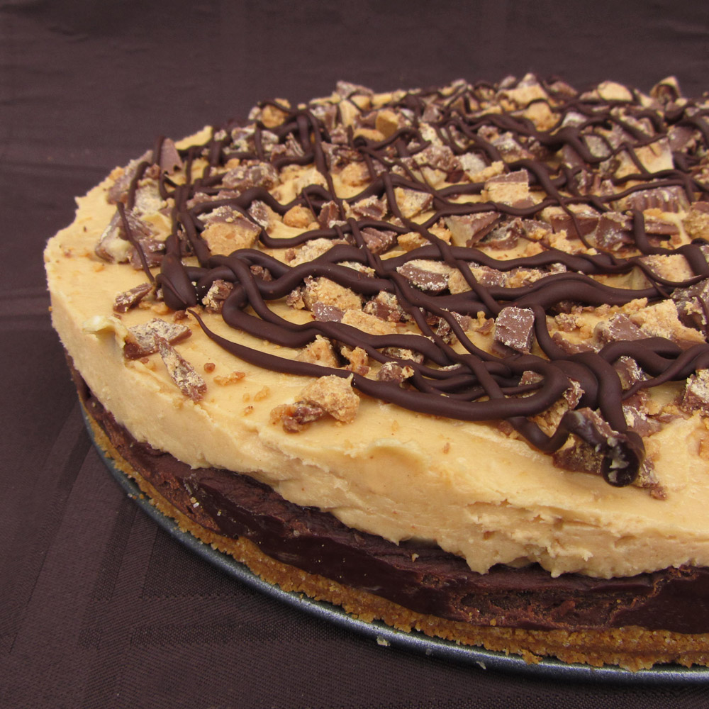 reese's peanut butter fudge pie