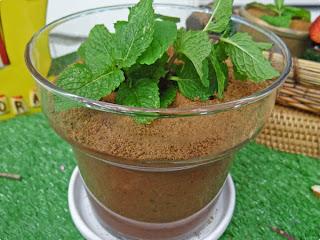 Vasinho de flor de chocolate