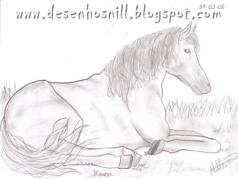 desenhos de cavalos para desenhar