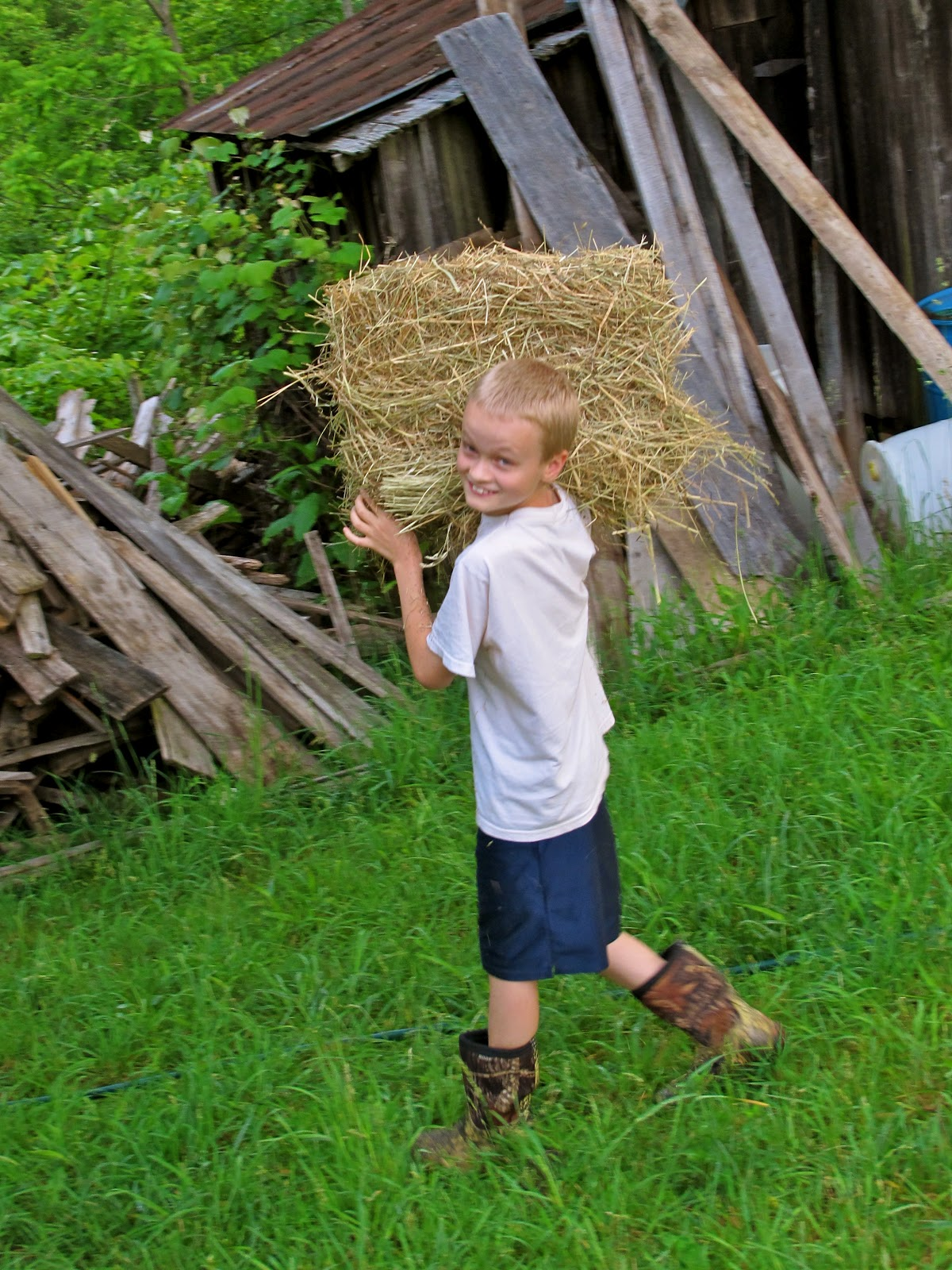 farm life chores Join me, as i do my daily routine of winter farm chores on a grass fed farm learn how, i tend my pastured chickens and grass fed beef cattle during.
