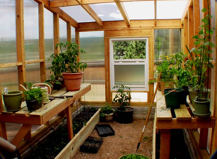 The Basics Of Building Your Own Greenhouse Urbangardening
