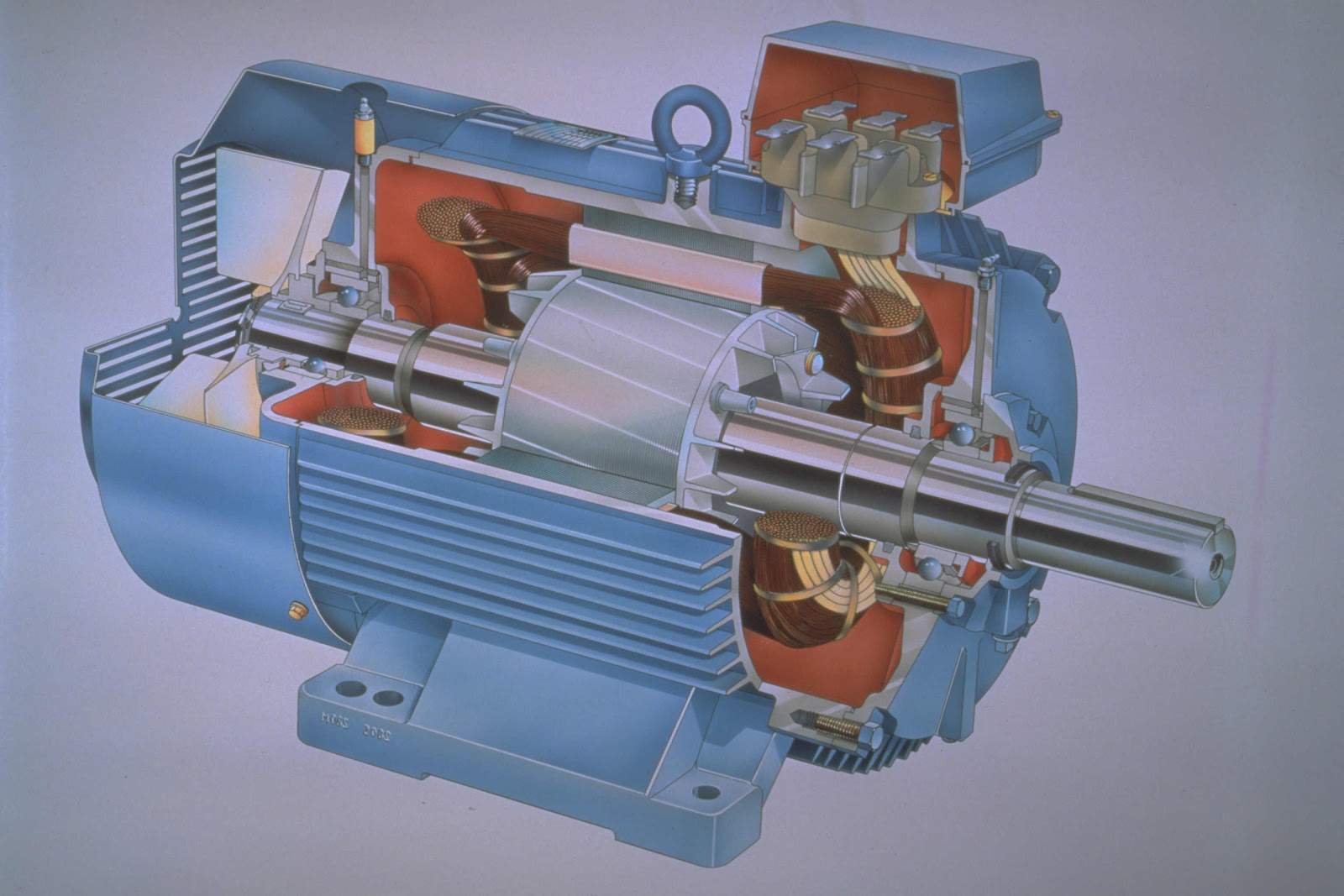 Ac Motor Construction Kit Picture Wiring Diagrams Rh Acmotorkitpicture Blogspot Com Parts Of Single Phase