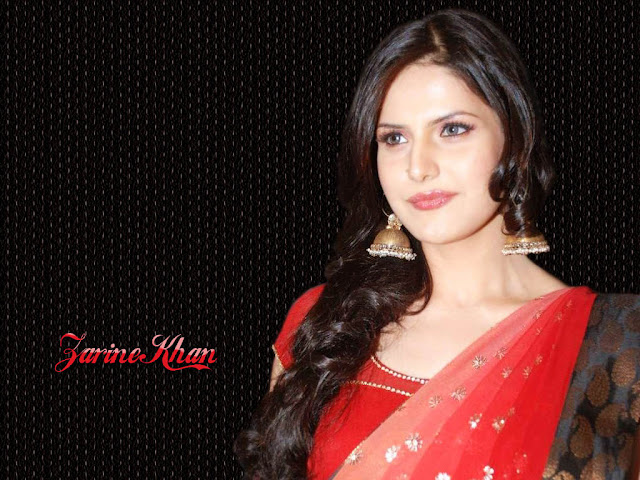 zarine khan hot photos & zarine khan hot pictures