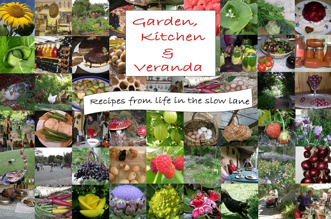Garden, Kitchen and Veranda
