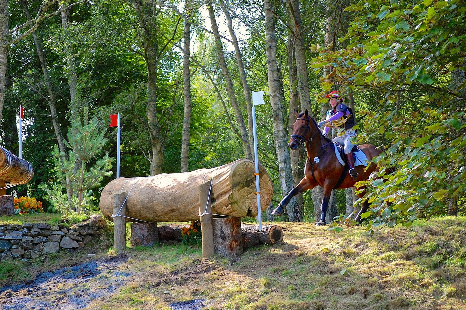 Blair Castle International Horse Trials; horse crash 1