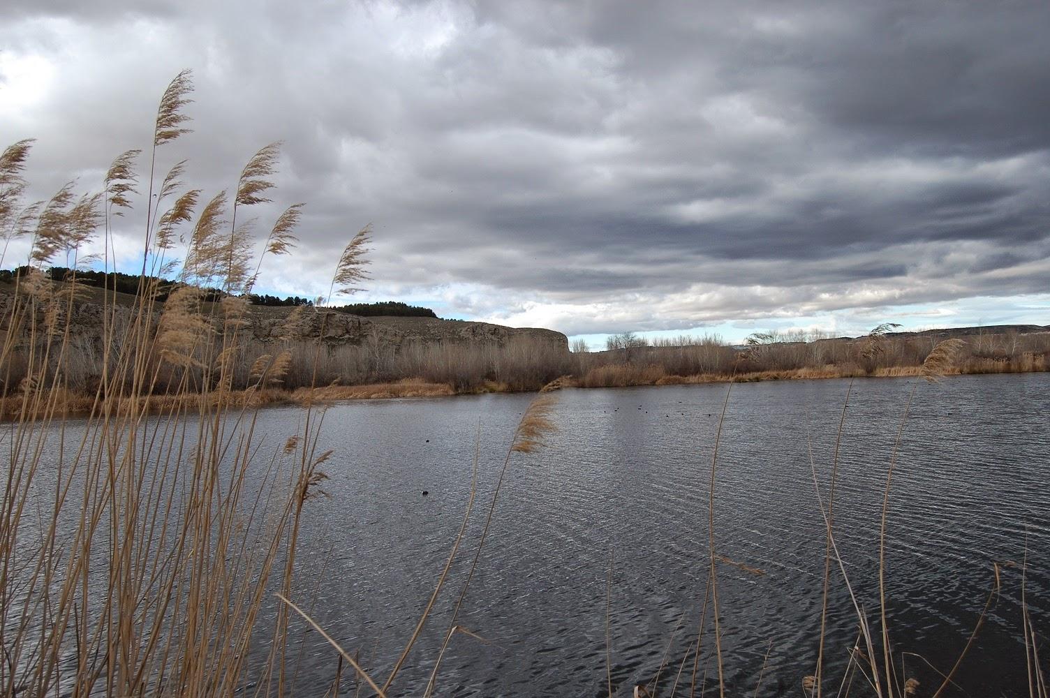 Blog Go Tandem - Laguna de la Junta en Rivas
