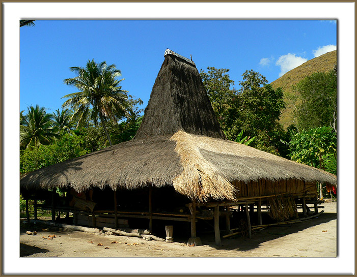 Download this Rumah Adat Tradisional Sumba picture