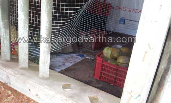 Fruits, Shop, Robbery, Kasaragod, Kerala, Kasargod Vartha, Malayalam news, Kerala News, International News, National News, Gulf News, Health News, Educational News, Business News, Stock news, Gold News.