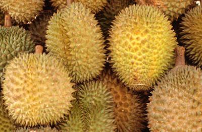 Durian, una fruta de fuerte olor