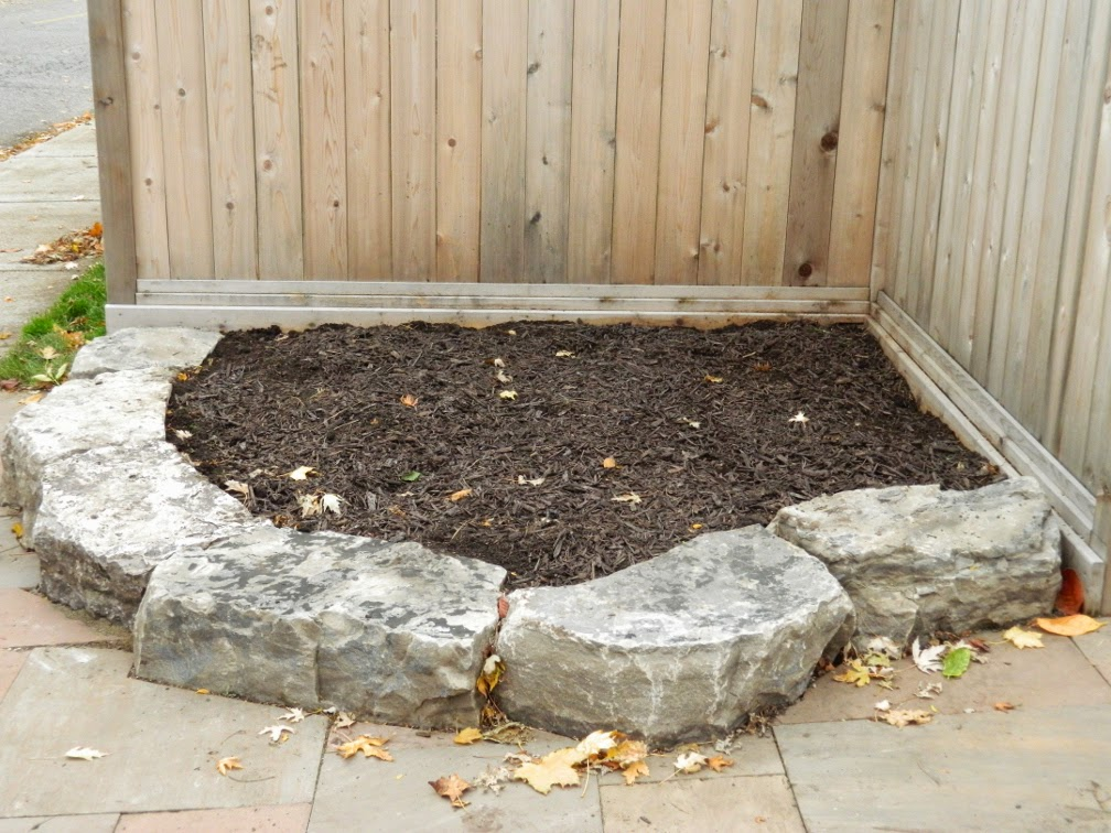 Toronto garden cleanup Pape Village after by Paul Jung Gardening Services