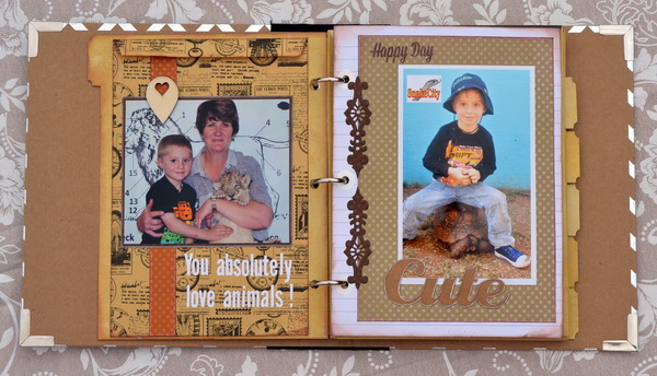 Misc.Me Album by Denise van Deventer using BoBunny Misc. Me, Cardstock and Bling