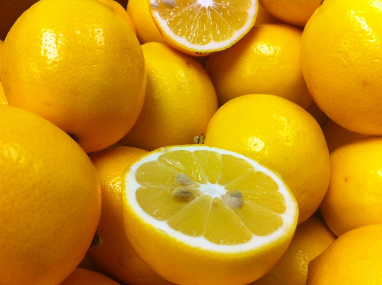 Madisono's Gelato: New Seasonal Flavors are Coming! Meyer Lemon sorbet